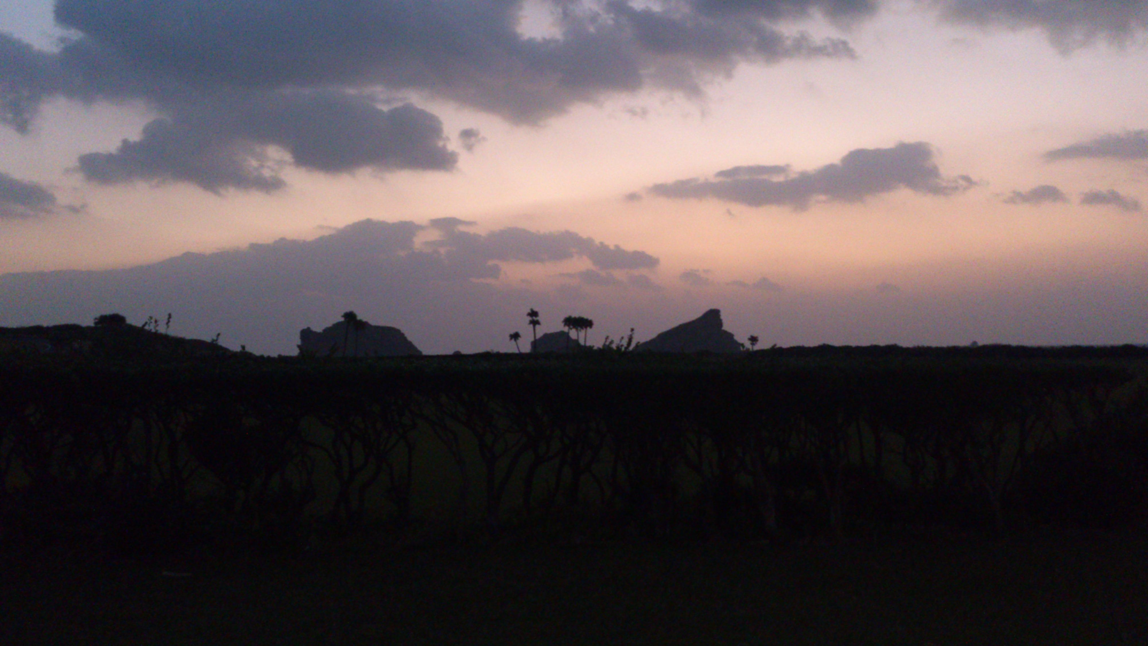 2012年12月。僕は種子島を一人で旅した:竹崎展望台で撮影したかは分からないが好きなショット