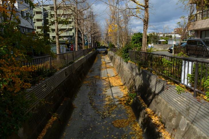 福岡散歩日誌:用水路
